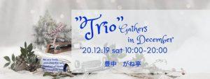 "Trio""Gathers in December"